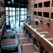 Ambrico Thin Brick Ez Wall Thin Brick System Brick