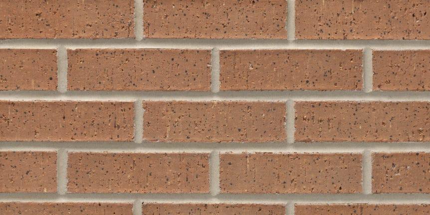 Acme Brick - Academy Heritage Texture, Modular thinBRIK
