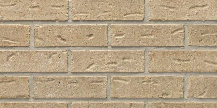Acme Brick - Americana Heritage Texture, Modular thinBRIK