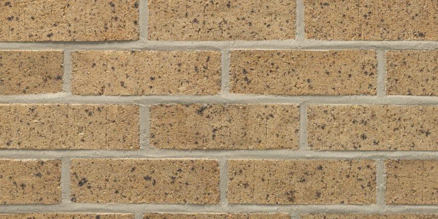 Acme Brick - Baja Blend Heritage Texture, Modular thinBRIK