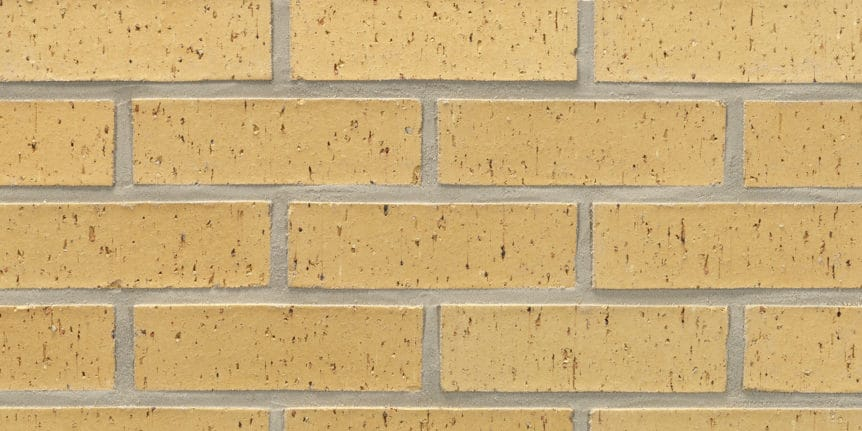 Acme Brick - Cremello Blade Cut Texture, Modular thinBRIK