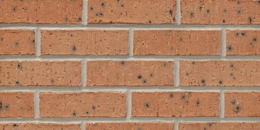 Acme Brick - Desert Peach Heritage Texture, Modular thinBRIK