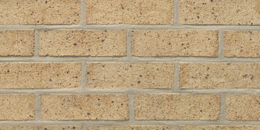 Acme Brick - El Ricardo Heritage Texture, Modular thinBRIK
