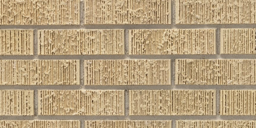 Acme Brick - French Vanilla Light Ruff Texture, Modular thinBRIK
