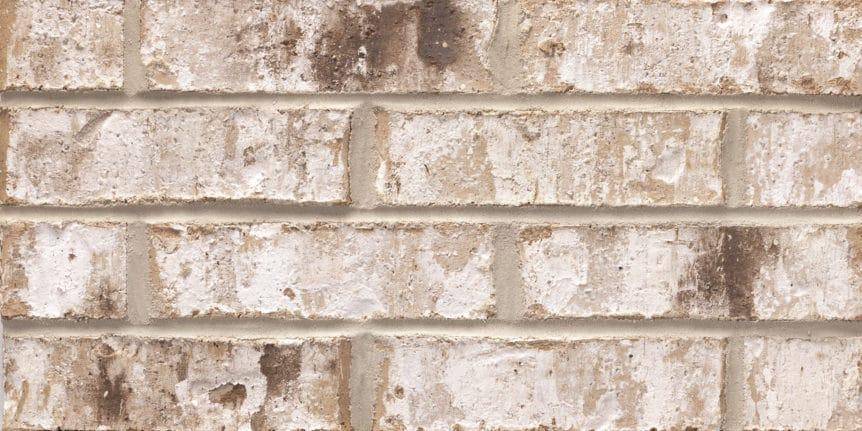 Acme Brick - Highstone Heritage Texture, King Size thinBRIK