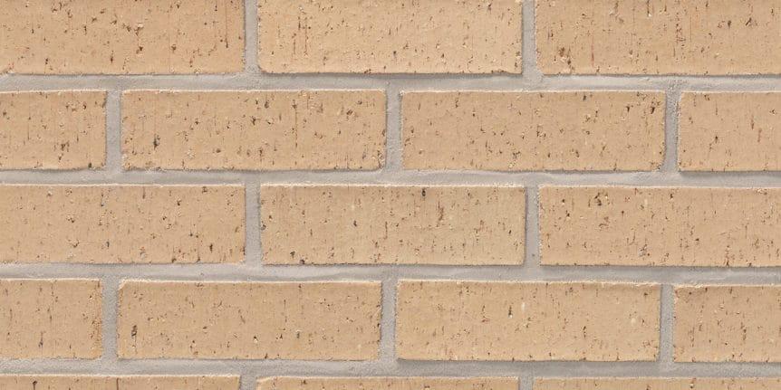 Acme Brick - Mimosa Blade Cut Texture, Modular thinBRIK