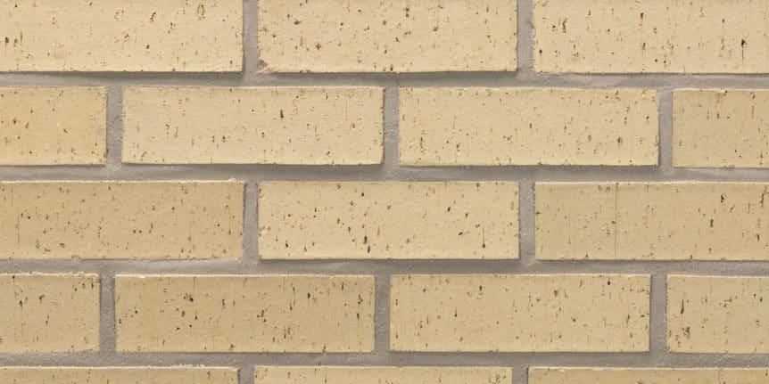 Acme Brick - Palisade Blade Cut Texture, Modular thinBRIK