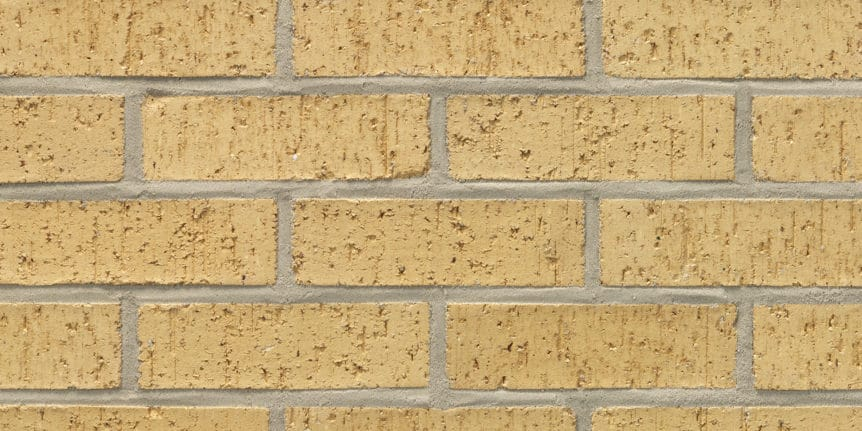 Acme Brick - Palomino Velour Texture, Modular thinBRIK