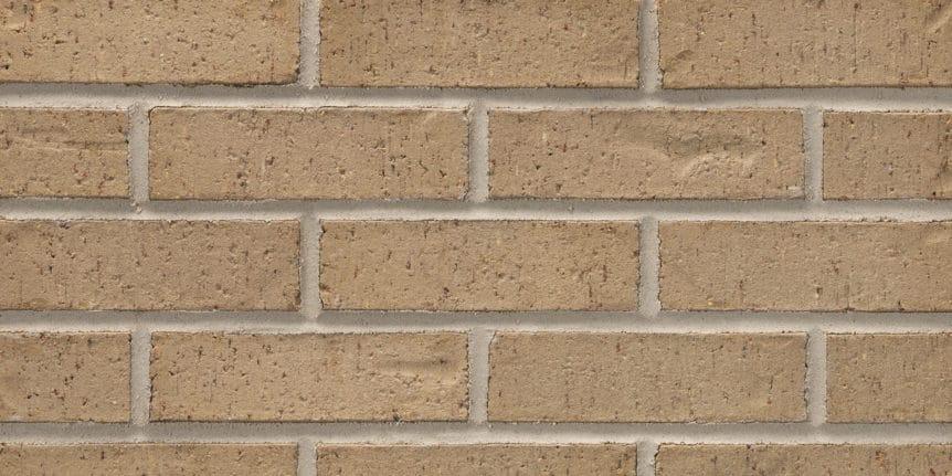 Acme Brick - Park Avenue Heritage Texture, Modular thinBRIK