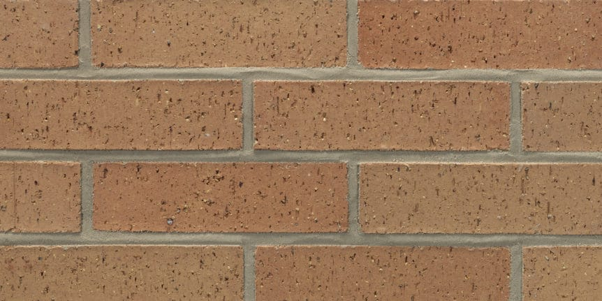 Acme Brick - Pecos Desert Blade Cut Texture, King Size thinBRIK