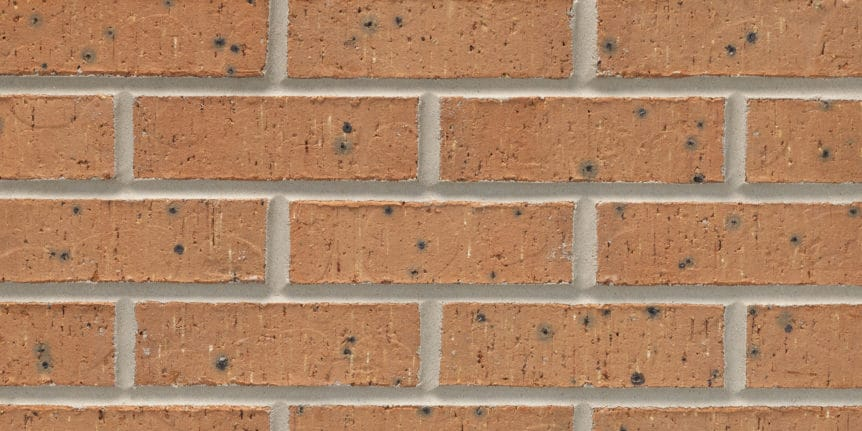 Acme Brick - Presidio Heritage Texture, Modular thinBRIK