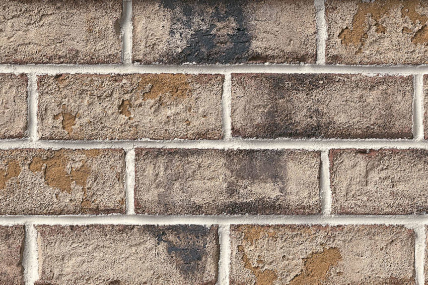 Authintic Brick by Meridian® Brick - Coastal Bluff Thin Brick