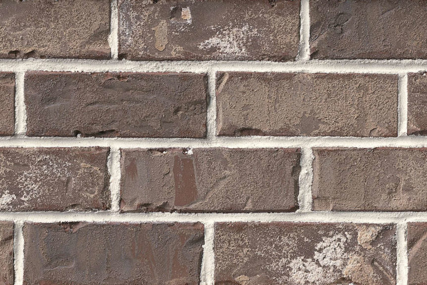 Authintic Brick by Meridian® Brick - Marsh Pointe Thin Brick