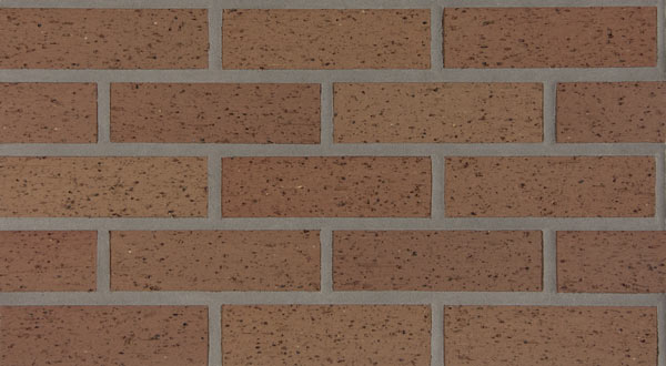 Endicott Thin Brick - Buff Blend