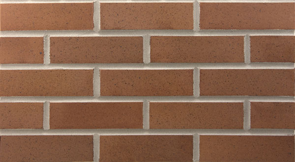 Endicott Thin Brick - Desert Ironspot Dark