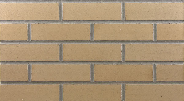 Endicott Thin Brick - Golden Buff