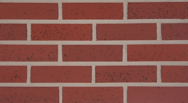 Endicott Thin Brick - Red Ironspot