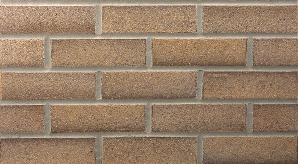 Endicott Thin Brick - Sahara Sands