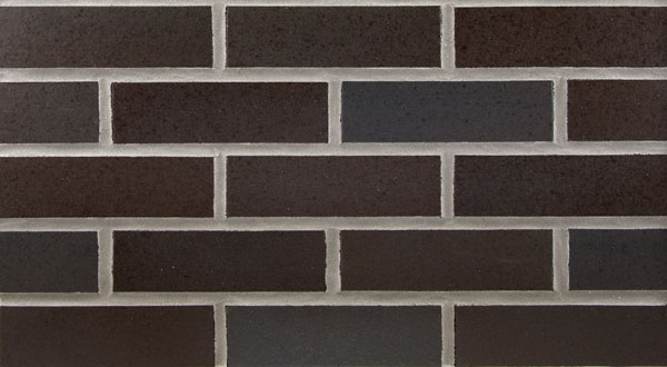Endicott Thin Brick - Sienna Ironspot