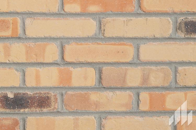 General Shale - Cigarfactory Thin Brick